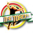 thetorch(logo)
